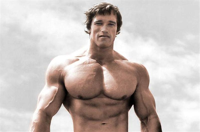 Arnold Schwarzenegger: Brains, Brawn and Body - Biographies